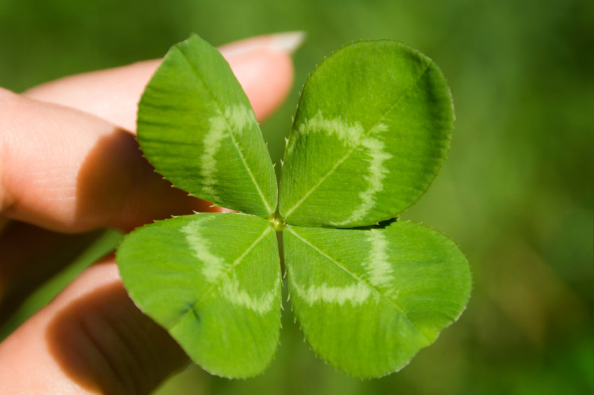 four-leaf-clover-luck-spell